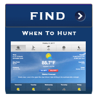 hunting conditions and information